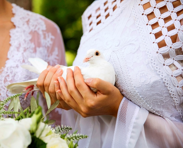 Release Peace and Love on your wedding day Photograph - Jennifer Oliphant