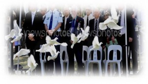 Memorial white doves