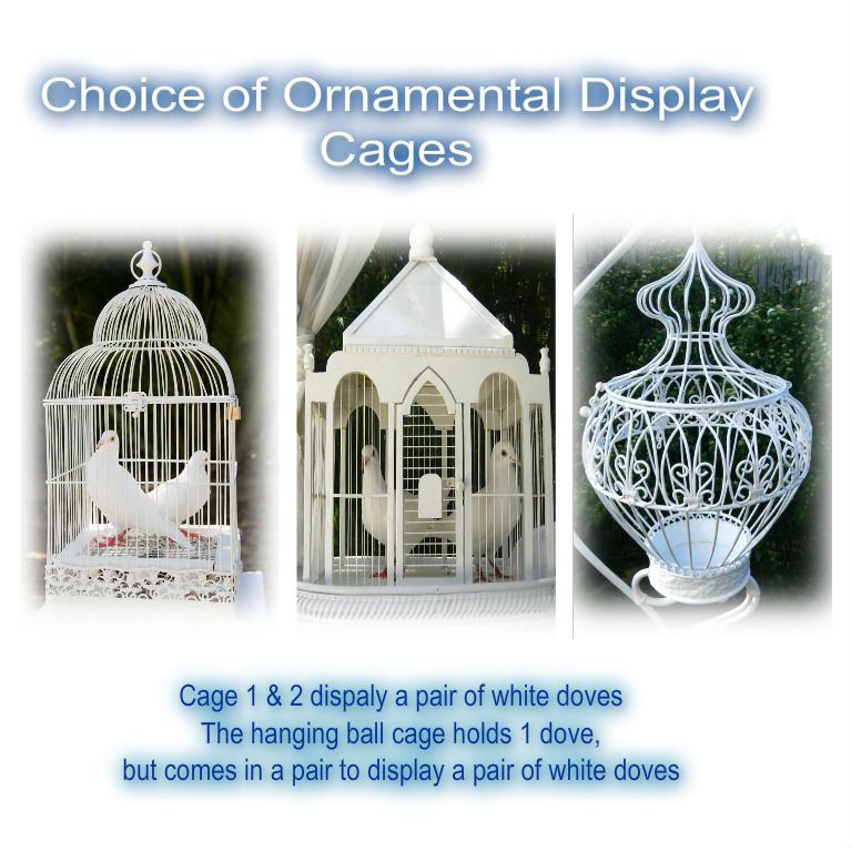 The hanging ball cage comes in a pair to display a pair of white doves