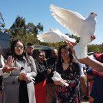 Samoan unveiling, white doves Brisbane, Mt Gravatt Cemetery