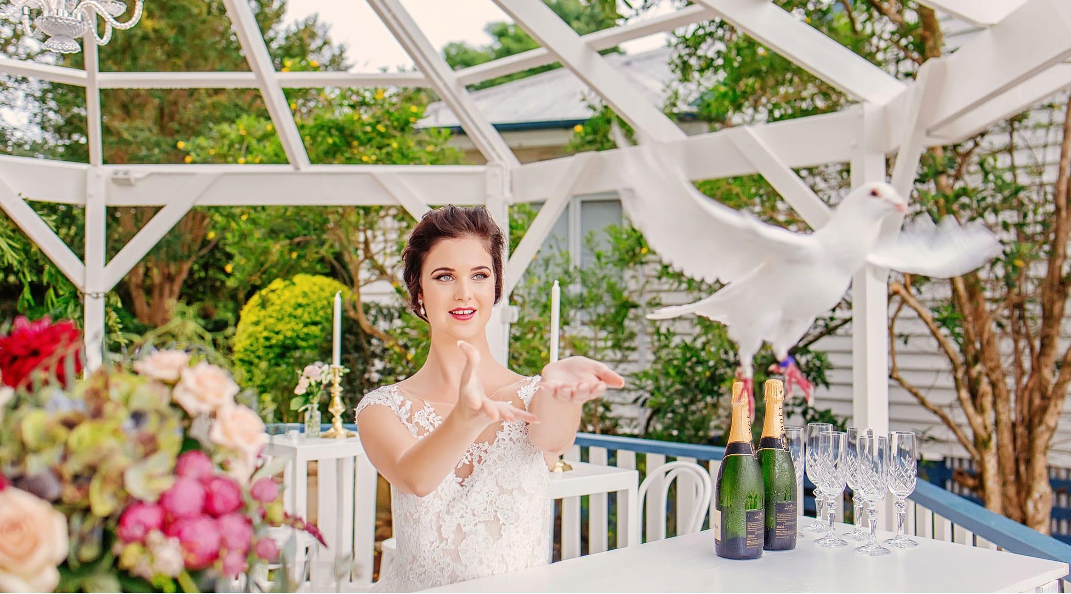 Bride-Dove-Release