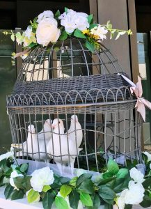 white doves, funeral, cremation, ashes scattered,